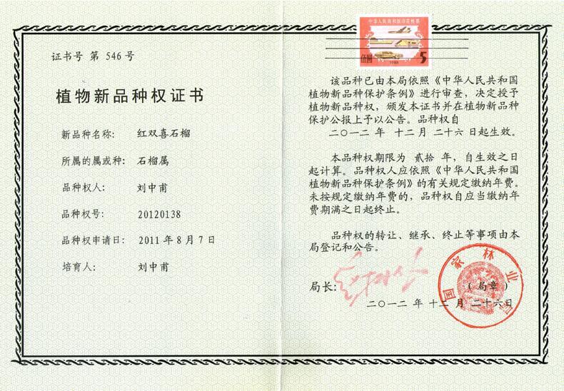 植物新品种权证书